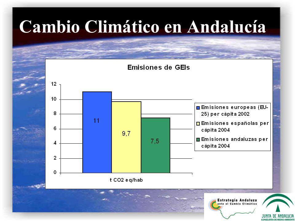 a) Cuantificación de la fijación de CO 2 Masas forestales arboladas en Andalucía mantienen fijadas 151 millones t CO 2 Biomasa radical 39 mill t Biomasa aérea 112 mill t Encina (36%) Alcornoque (10.7%) Pino piñonero (11.6%)
