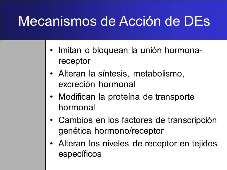 Mecanismos de Acción de DEs Imitan o bloquean la unión hormona- receptor Alteran la síntesis, metabolismo, excreción hormonal Modifican la proteína de transporte hormonal Cambios en los factores de transcripción genética hormono/receptor Alteran los niveles de receptor en tejidos específicos