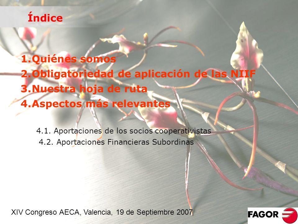 1.Quiénes somos 2.Obligatoriedad de aplicación de las NIIF 3.Nuestra hoja de ruta 4.Aspectos más relevantes 4.1. Aportaciones de los socios cooperativ