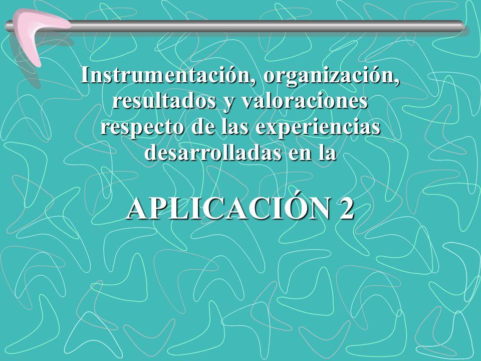 Instrumentación, organización, resultados y valoraciones respecto de las experiencias desarrolladas en la APLICACIÓN 2