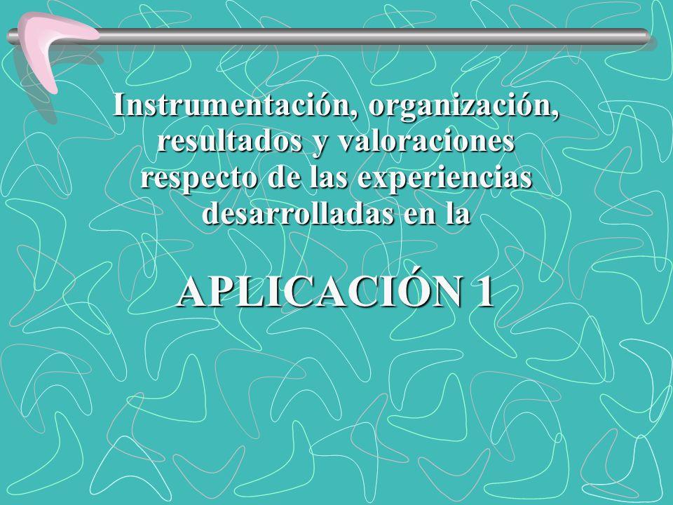Instrumentación, organización, resultados y valoraciones respecto de las experiencias desarrolladas en la APLICACIÓN 1