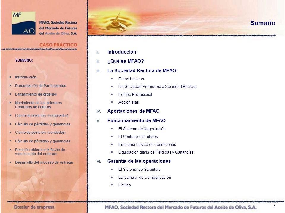 2 Sumario I. Introducción II. ¿Qué es MFAO? III. La Sociedad Rectora de MFAO: Datos básicos De Sociedad Promotora a Sociedad Rectora. Equipo Profesion