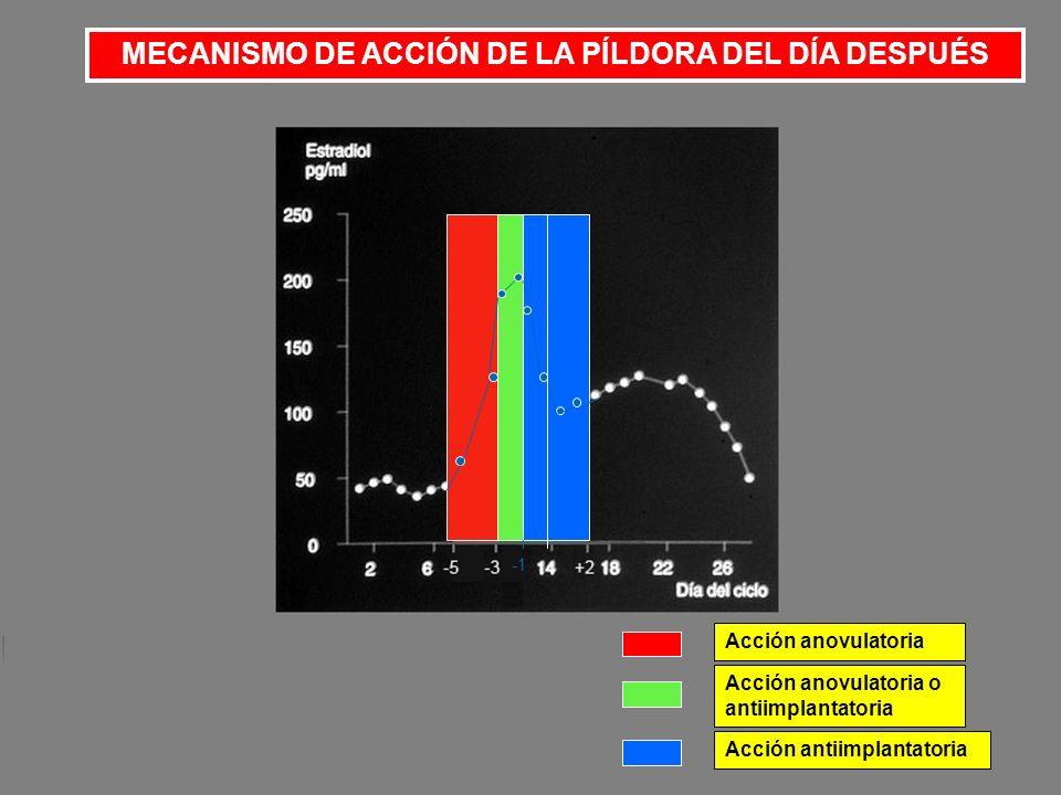 39 TOTAL DE PERSONAS AYUDAS POR PROVIDA ESPAÑA EN 2009 19.057