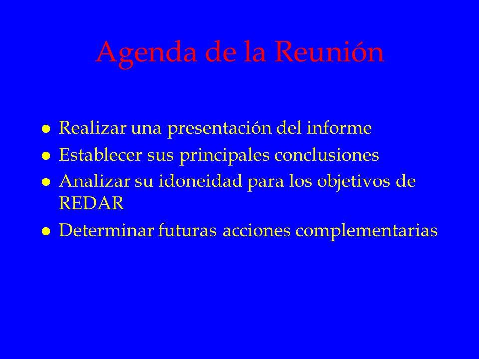 Agenda de la Reunión l Realizar una presentación del informe l Establecer sus principales conclusiones l Analizar su idoneidad para los objetivos de R