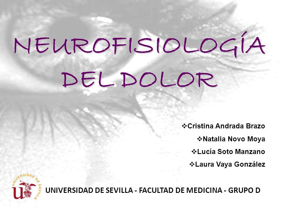 Cristina Andrada Brazo Natalia Novo Moya Lucía Soto Manzano Laura Vaya González UNIVERSIDAD DE SEVILLA - FACULTAD DE MEDICINA - GRUPO D NEUROFISIOLOGÍ