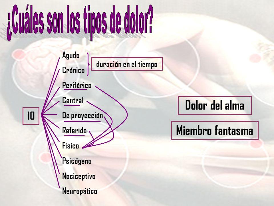 10 Agudo Crónico Periférico Central De proyección Referido Físico Psicógeno Nociceptivo Neuropático duración en el tiempo Dolor del alma Miembro fanta
