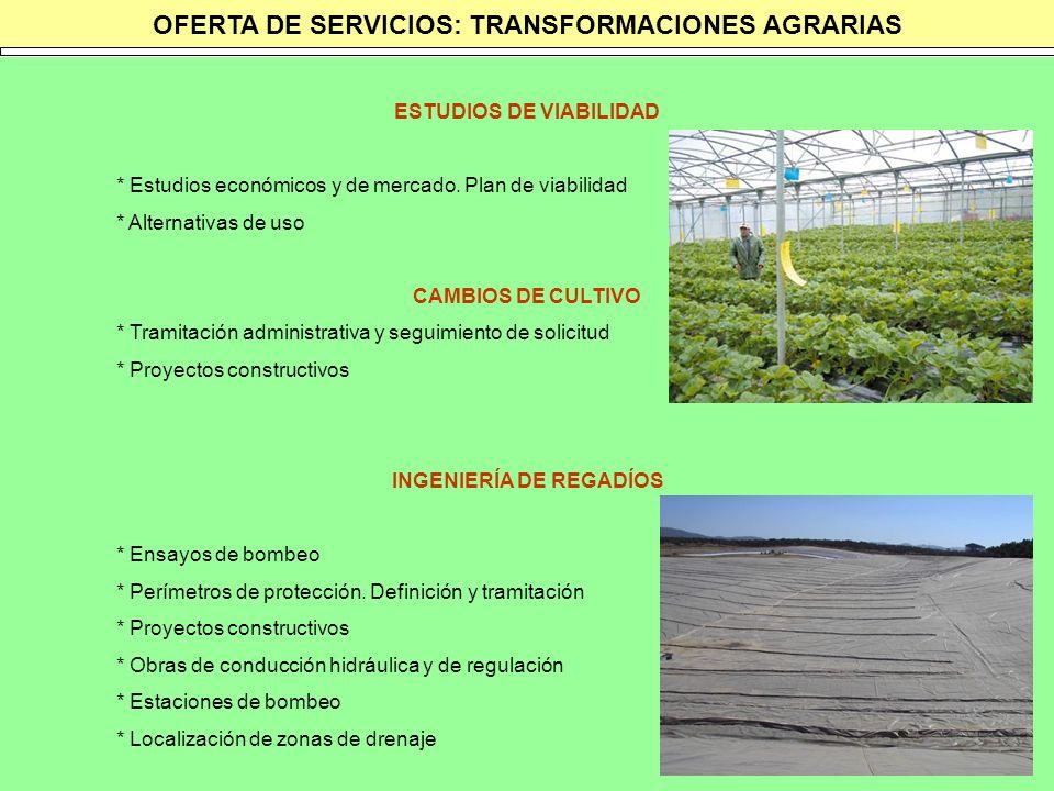 OFERTA DE SERVICIOS: TRANSFORMACIONES AGRARIAS ESTUDIOS DE VIABILIDAD * Estudios económicos y de mercado. Plan de viabilidad * Alternativas de uso CAM