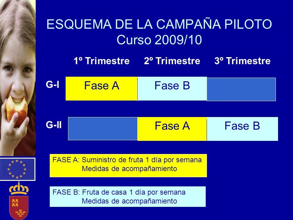 ESQUEMA DE LA CAMPAÑA PILOTO Curso 2009/10 1º Trimestre2º Trimestre3º Trimestre G-I Fase AFase B G-II Fase AFase B FASE A: Suministro de fruta 1 día p