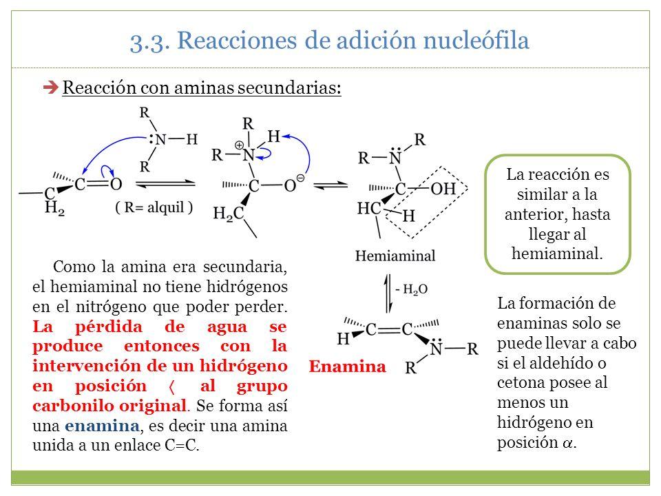 3.3. Reacciones de adición nucleófila Reacción con aminas secundarias: Como la amina era secundaria, el hemiaminal no tiene hidrógenos en el nitrógeno
