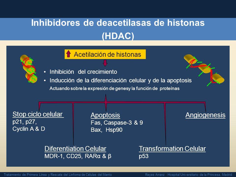 Tratamiento de Primera Línea y Rescate del Linfoma de Células del Manto Reyes Arranz · Hospital Universitario de la Princesa, Madrid Inhibidores de de