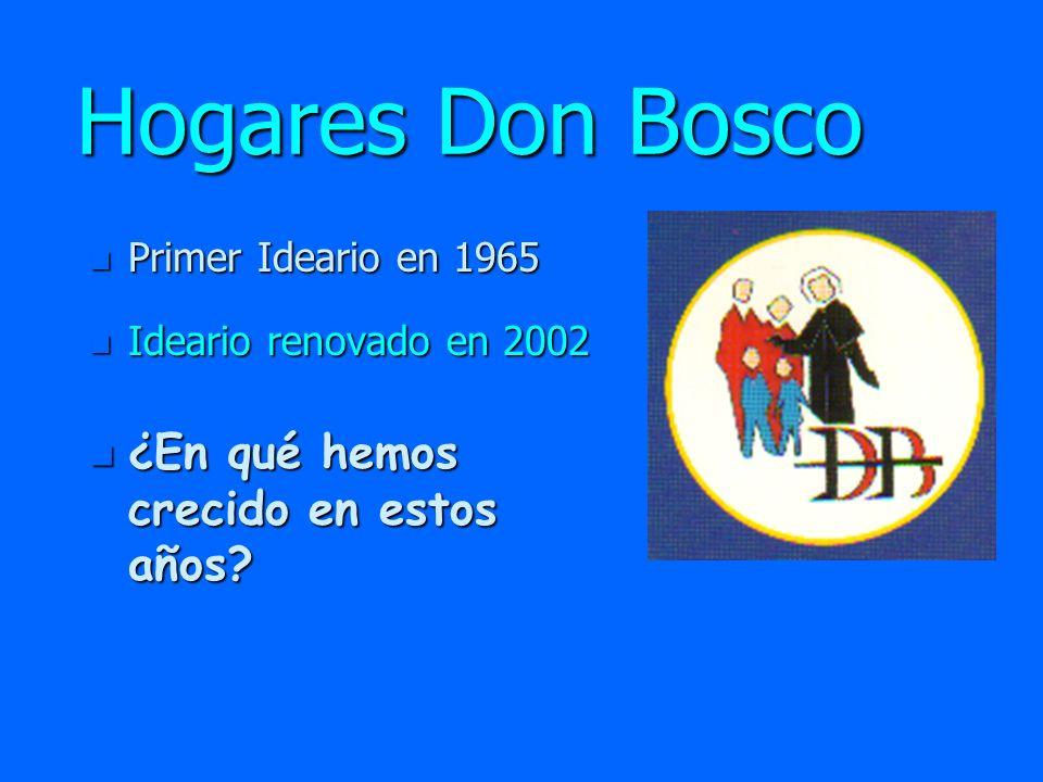 Hogares Don Bosco n Número de miembros n Experiencia Pastoral n Formación n Necesidades n Metas ¿En qué hemos crecido en estos años.