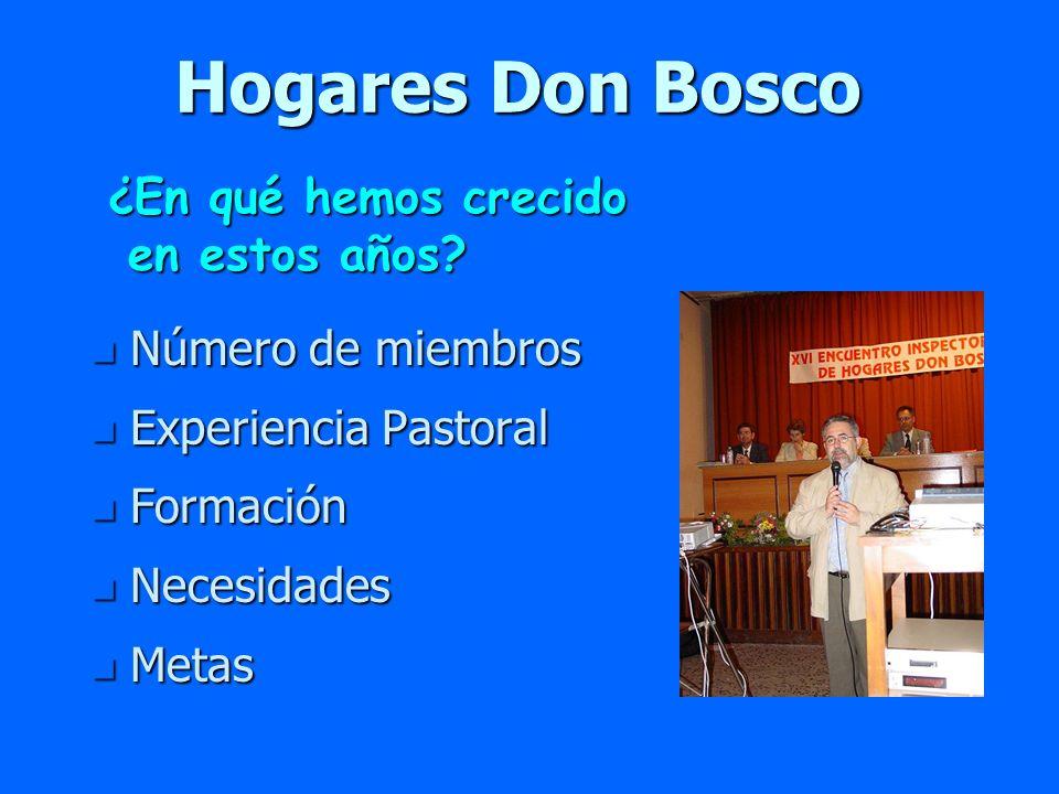 Hogares Don Bosco n Número de miembros n Experiencia Pastoral n Formación n Necesidades n Metas ¿En qué hemos crecido en estos años? en estos años?