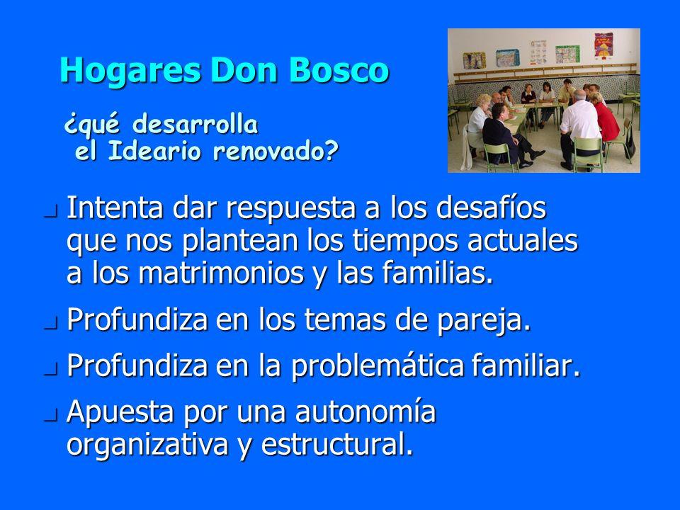 Hogares Don Bosco n Intenta dar respuesta a los desafíos que nos plantean los tiempos actuales a los matrimonios y las familias. n Profundiza en los t