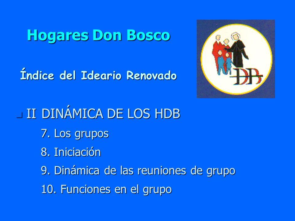 Hogares Don Bosco n II DINÁMICA DE LOS HDB 7. Los grupos 7. Los grupos 8. Iniciación 8. Iniciación 9. Dinámica de las reuniones de grupo 9. Dinámica d