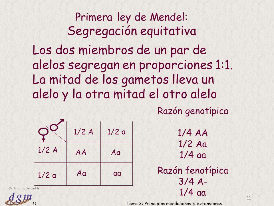 12 Dr.