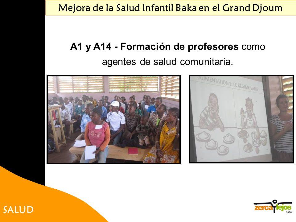 SALUD A1 y A14 - Formación de profesores como agentes de salud comunitaria. Mejora de la Salud Infantil Baka en el Grand Djoum