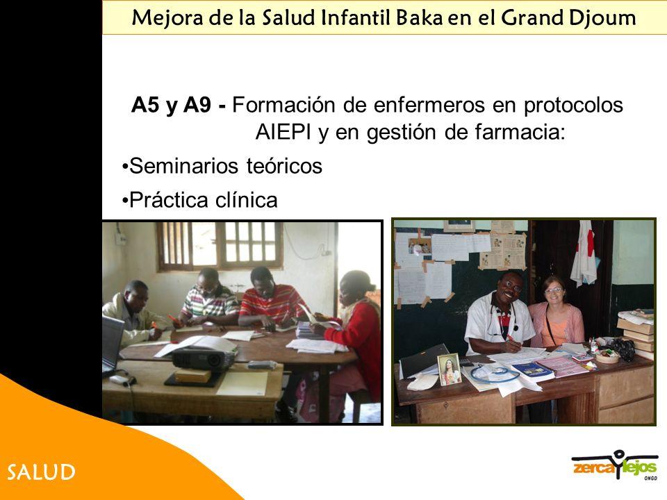SALUD Mejora de la Salud Infantil Baka en el Grand Djoum A5 y A9 - Formación de enfermeros en protocolos AIEPI y en gestión de farmacia: Seminarios te