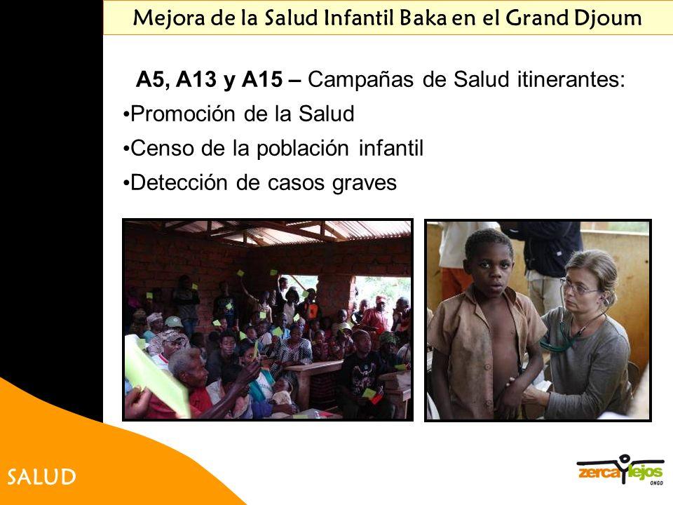 SALUD Mejora de la Salud Infantil Baka en el Grand Djoum A5, A13 y A15 – Campañas de Salud itinerantes: Promoción de la Salud Censo de la población in