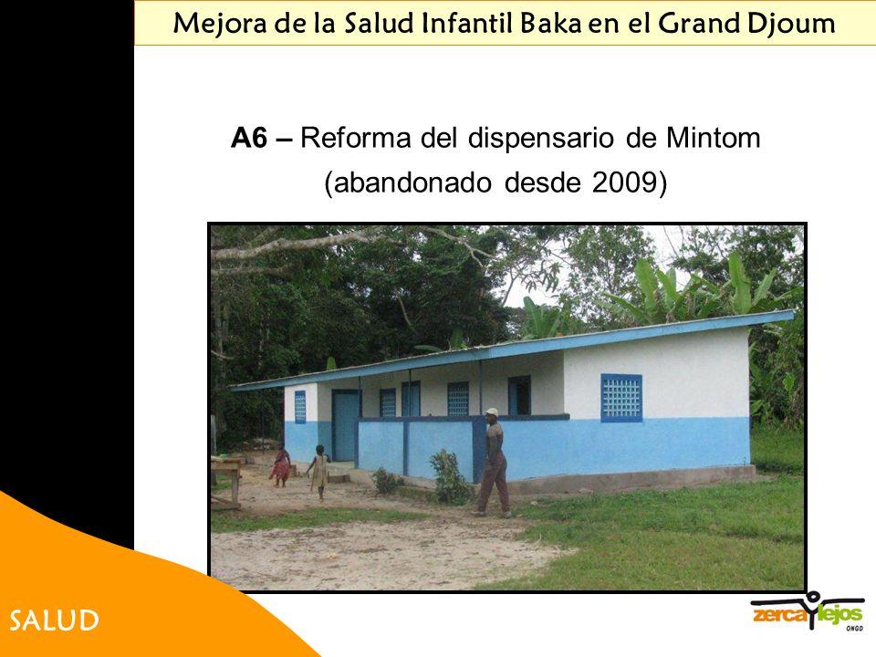 Mejora de la Salud Infantil Baka en el Grand Djoum A6 – Reforma del dispensario de Mintom (abandonado desde 2009) SALUD