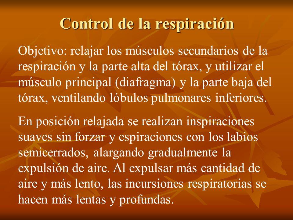 Control de la respiración Objetivo: relajar los músculos secundarios de la respiración y la parte alta del tórax, y utilizar el músculo principal (dia