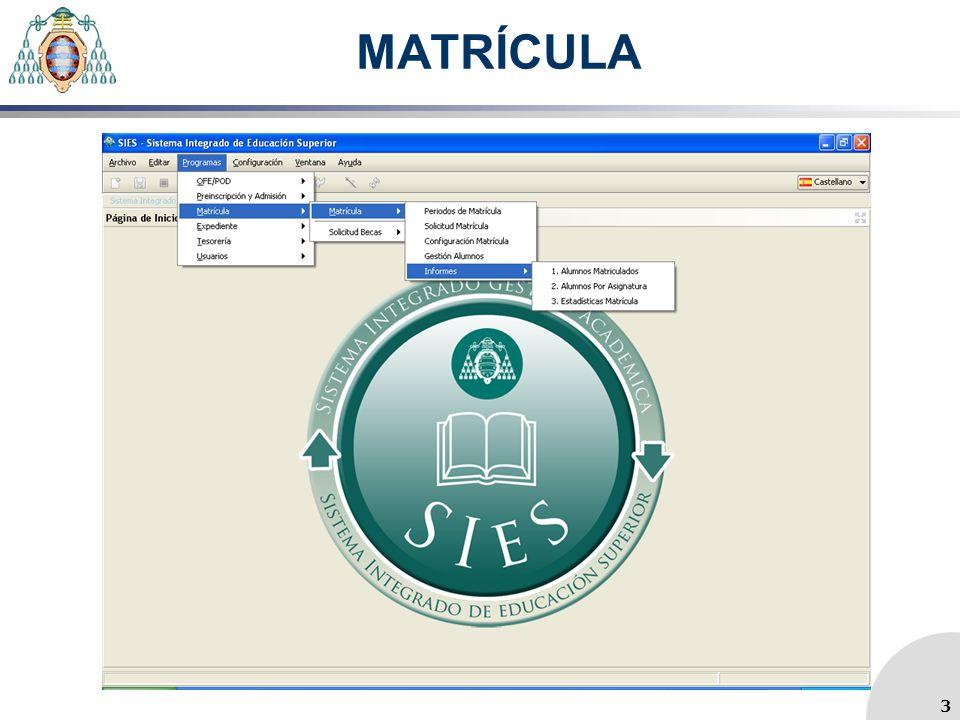 MATRÍCULA 3