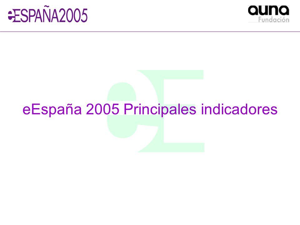 eEspaña 2005 Principales indicadores