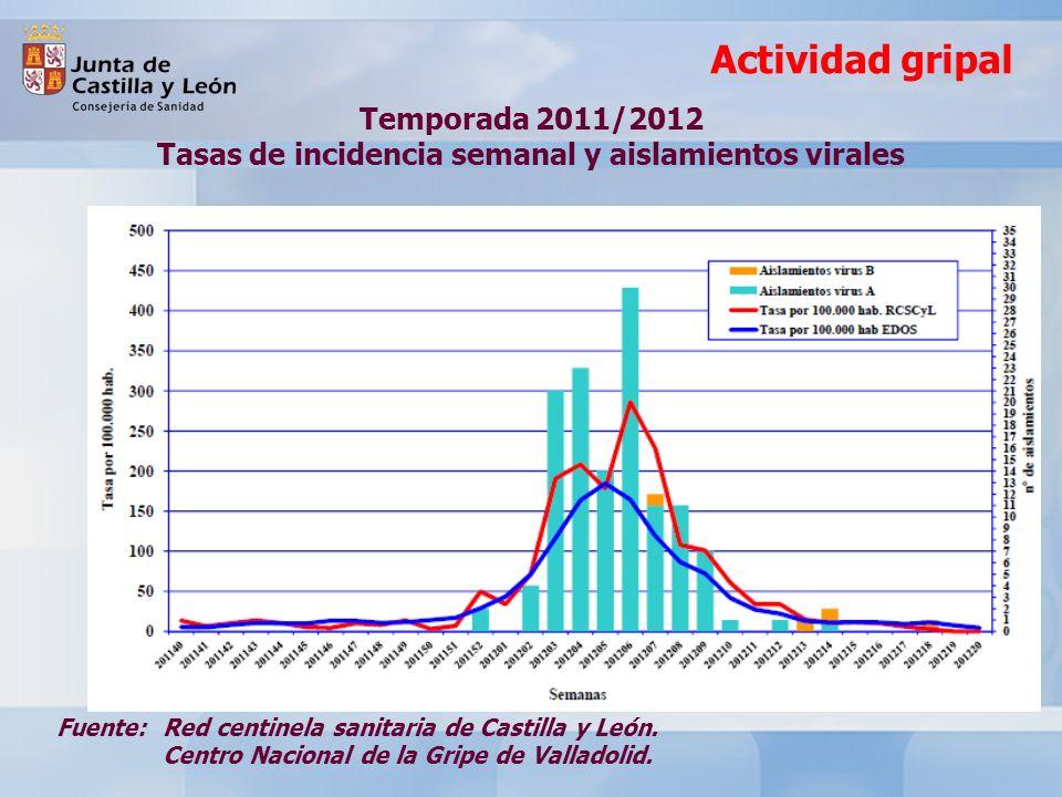 Actividad gripal Fuente: Red centinela sanitaria de Castilla y León.