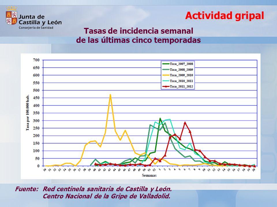 Balance de la Campaña 2011-2012