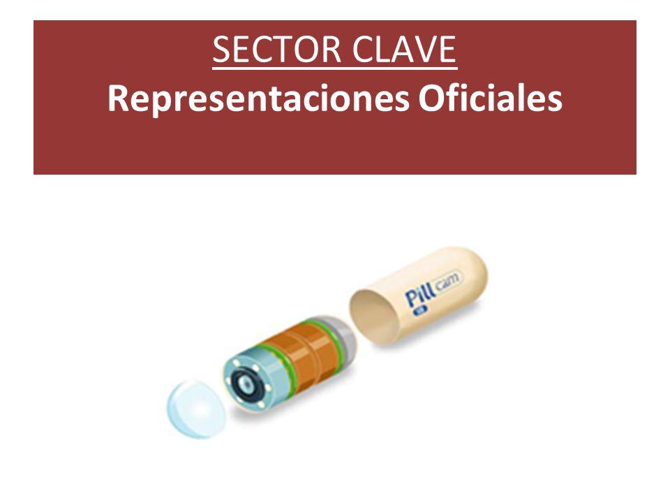 SECTOR CLAVE Representaciones Oficiales