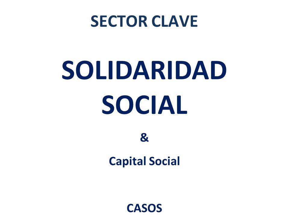 SECTOR CLAVE SOLIDARIDAD SOCIAL & Capital Social CASOS