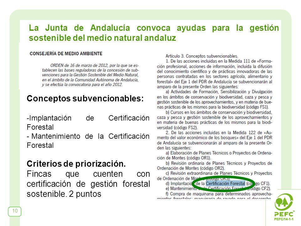 10 La Junta de Andalucía convoca ayudas para la gestión sostenible del medio natural andaluz Conceptos subvencionables: -Implantación de Certificación Forestal - Mantenimiento de la Certificación Forestal Criterios de priorización.