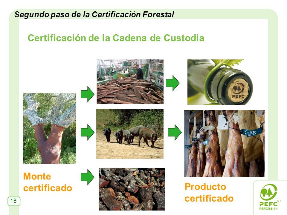Certificación de la Cadena de Custodia Monte certificado Producto certificado Segundo paso de la Certificación Forestal 18