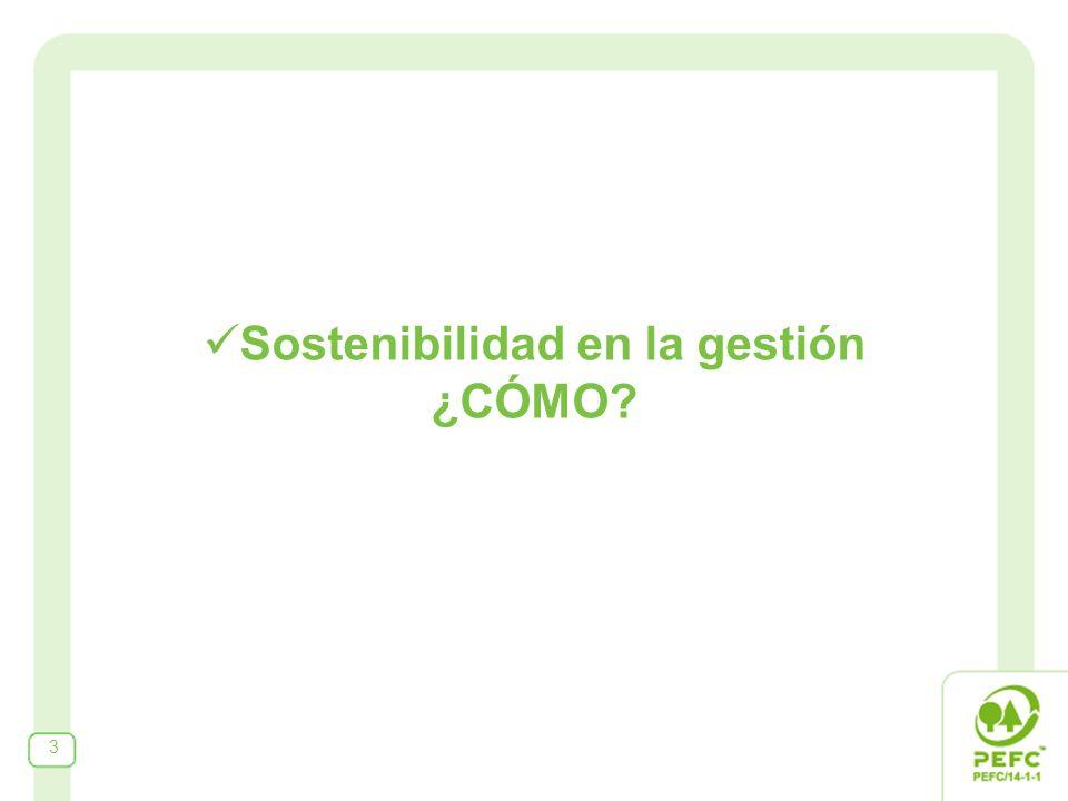 Sostenibilidad en la gestión ¿CÓMO? 3