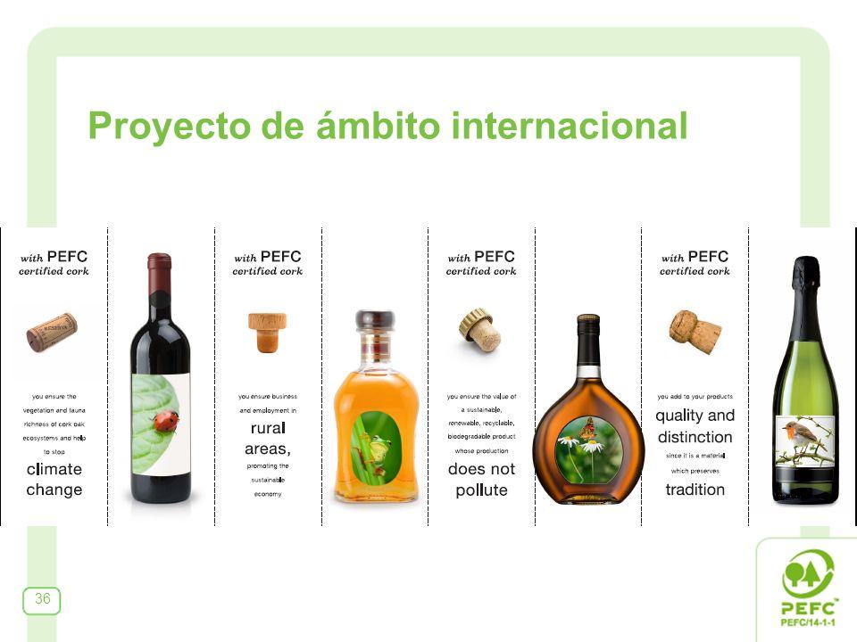 36 Proyecto de ámbito internacional