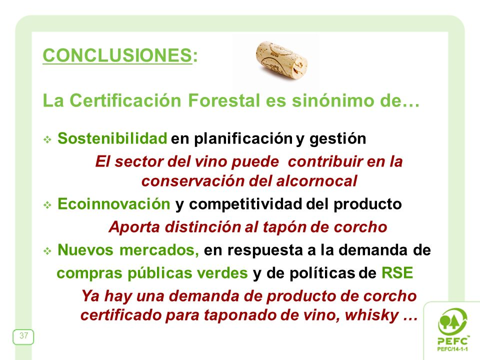 CONCLUSIONES: La Certificación Forestal es sinónimo de… Sostenibilidad en planificación y gestión El sector del vino puede contribuir en la conservación del alcornocal Ecoinnovación y competitividad del producto Aporta distinción al tapón de corcho Nuevos mercados, en respuesta a la demanda de compras públicas verdes y de políticas de RSE Ya hay una demanda de producto de corcho certificado para taponado de vino, whisky … 37