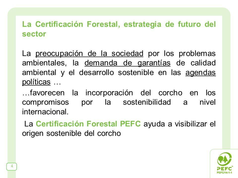 4 La Certificación Forestal, estrategia de futuro del sector La preocupación de la sociedad por los problemas ambientales, la demanda de garantías de calidad ambiental y el desarrollo sostenible en las agendas políticas … …favorecen la incorporación del corcho en los compromisos por la sostenibilidad a nivel internacional.