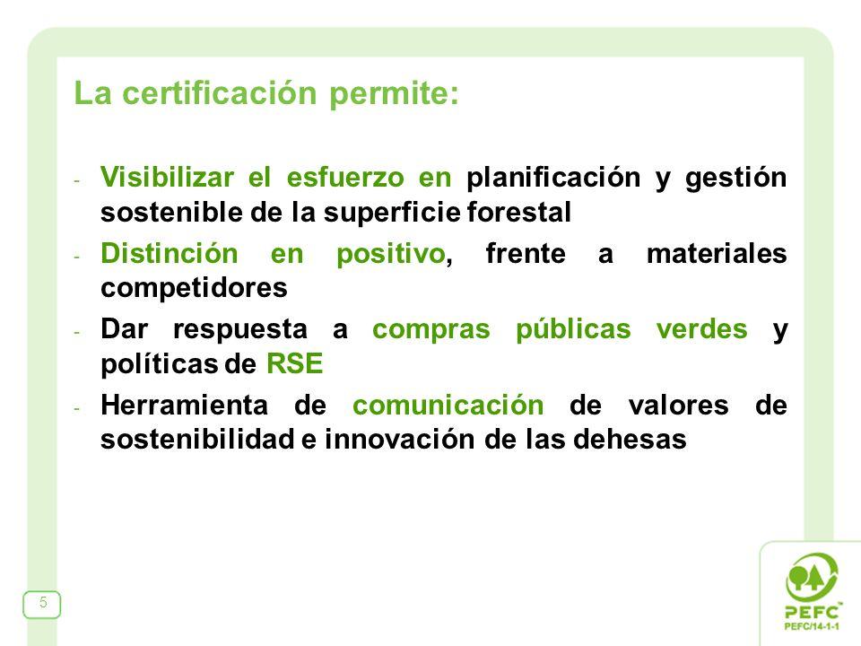 La certificación permite: - Visibilizar el esfuerzo en planificación y gestión sostenible de la superficie forestal - Distinción en positivo, frente a materiales competidores - Dar respuesta a compras públicas verdes y políticas de RSE - Herramienta de comunicación de valores de sostenibilidad e innovación de las dehesas 5