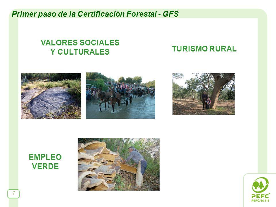 VALORES SOCIALES Y CULTURALES 7 TURISMO RURAL EMPLEO VERDE Primer paso de la Certificación Forestal - GFS