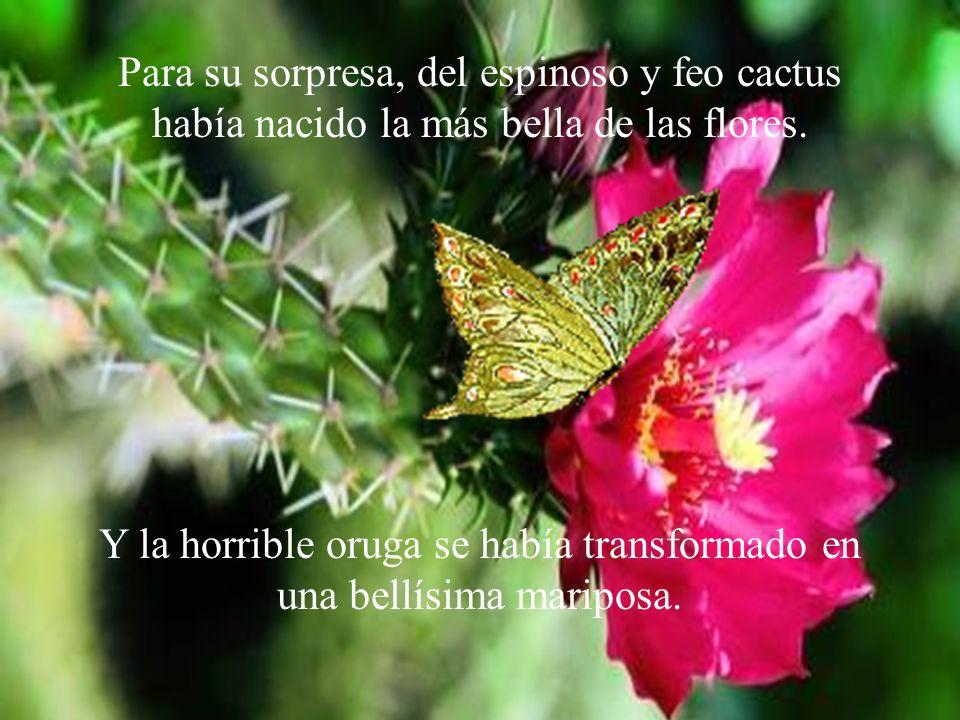 Para su sorpresa, del espinoso y feo cactus había nacido la más bella de las flores.
