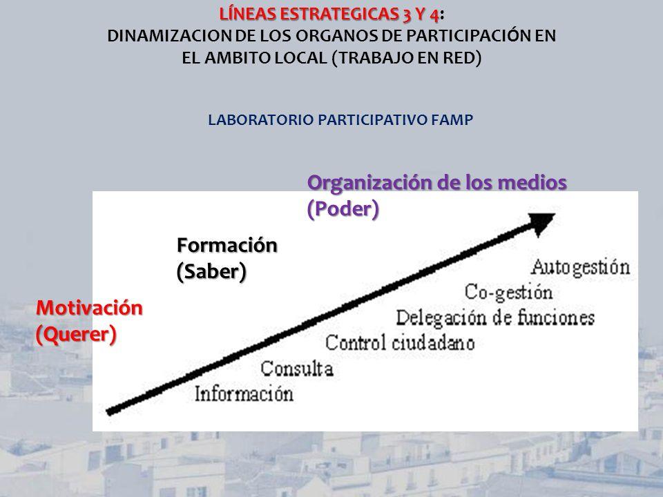 LÍNEAS ESTRATEGICAS 3 Y 4 LÍNEAS ESTRATEGICAS 3 Y 4: DINAMIZACION DE LOS ORGANOS DE PARTICIPACIÓN EN EL AMBITO LOCAL (TRABAJO EN RED) LABORATORIO PART