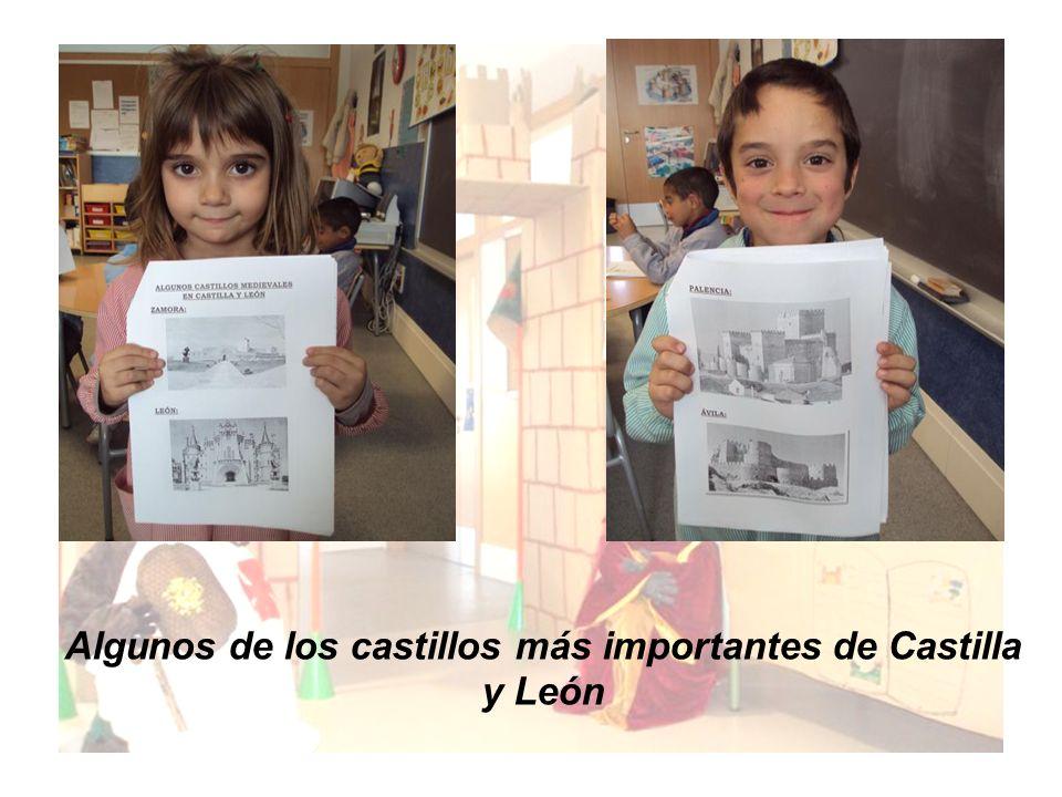 Algunos de los castillos más importantes de Castilla y León