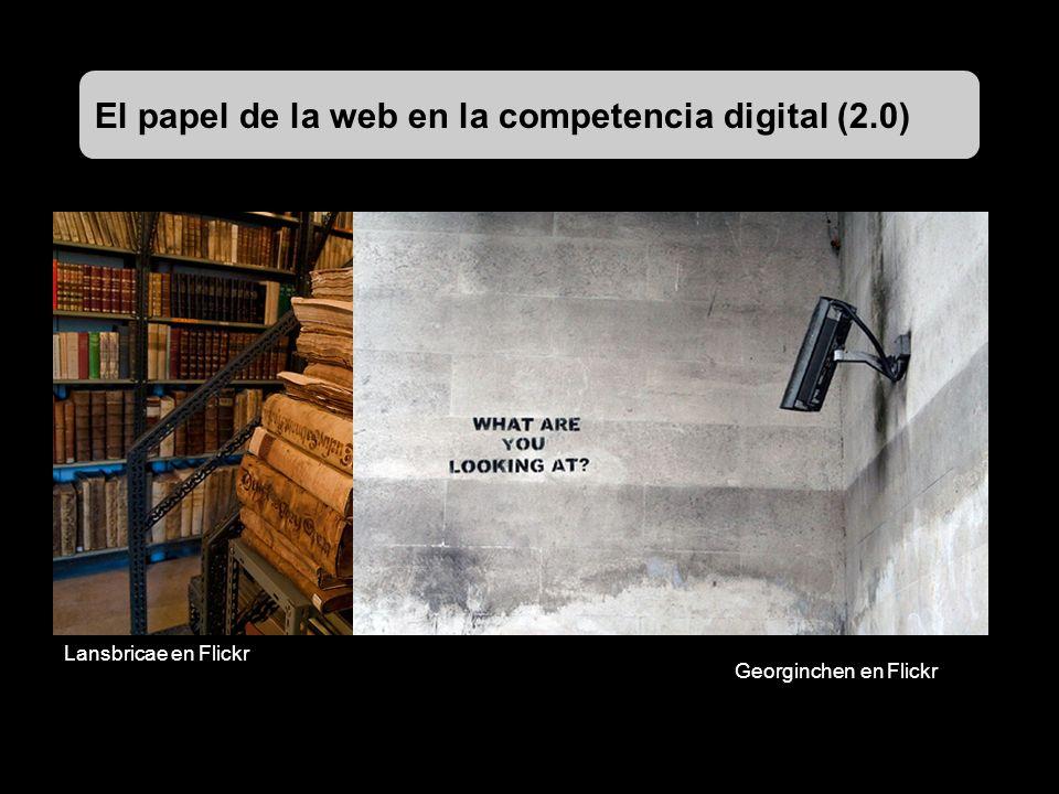 El papel de la web en la competencia digital (2.0) Lansbricae en Flickr Georginchen en Flickr