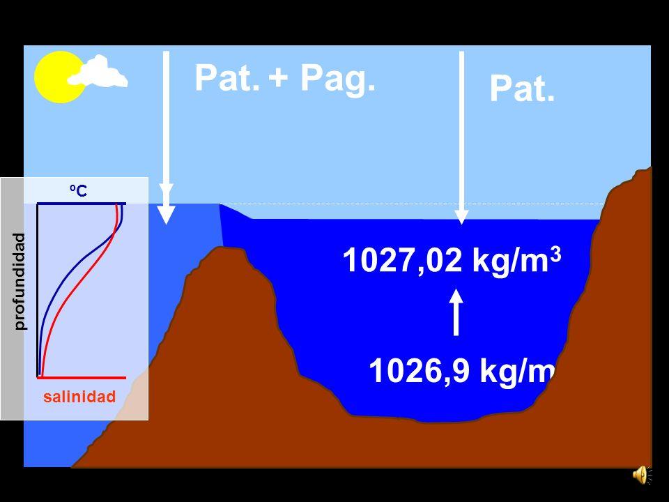 15,6ºC 36,5 1,44 x 1016 kg de sal Año=0 Año=1 E N = 2500 km 3 Vol. X 36,5 Vol - E N = 36,52 F Q = 7 W/m 2 Q = 5,52 x 10 20 J/año Q M x cp 15,57 ºC T =