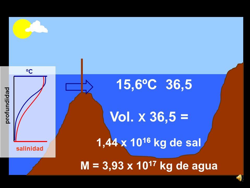 ºC salinidad profundidad