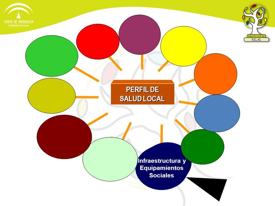 PERFIL DE SALUD LOCAL Infraestructura y Equipamientos Sociales