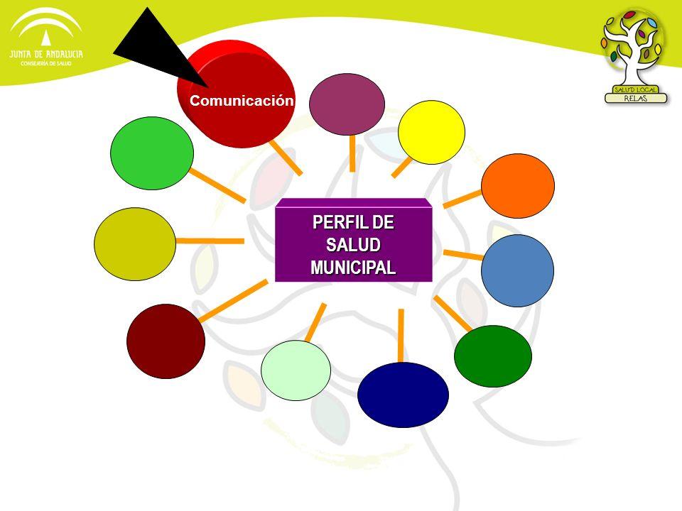 PERFIL DE SALUD MUNICIPAL Comunicación