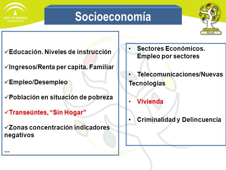 Educación. Niveles de instrucción Ingresos/Renta per capita. Familiar Empleo/Desempleo Población en situación de pobreza Transeúntes, Sin Hogar Transe