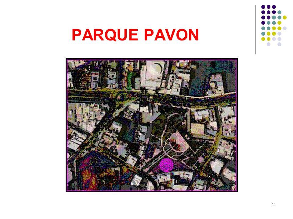 22 PARQUE PAVON