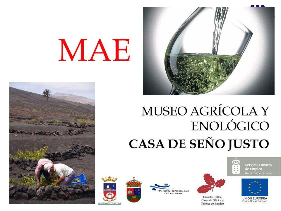 30 MAE MUSEO AGRÍCOLA Y ENOLÓGICO CASA DE SEÑO JUSTO