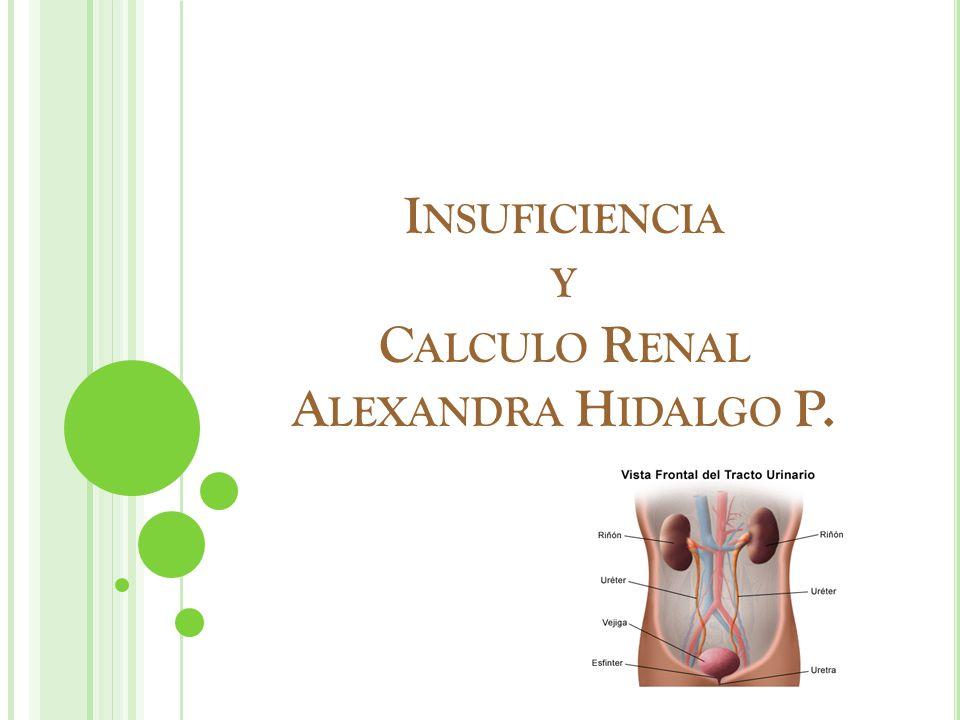 I NSUFICIENCIA Y C ALCULO R ENAL A LEXANDRA H IDALGO P.